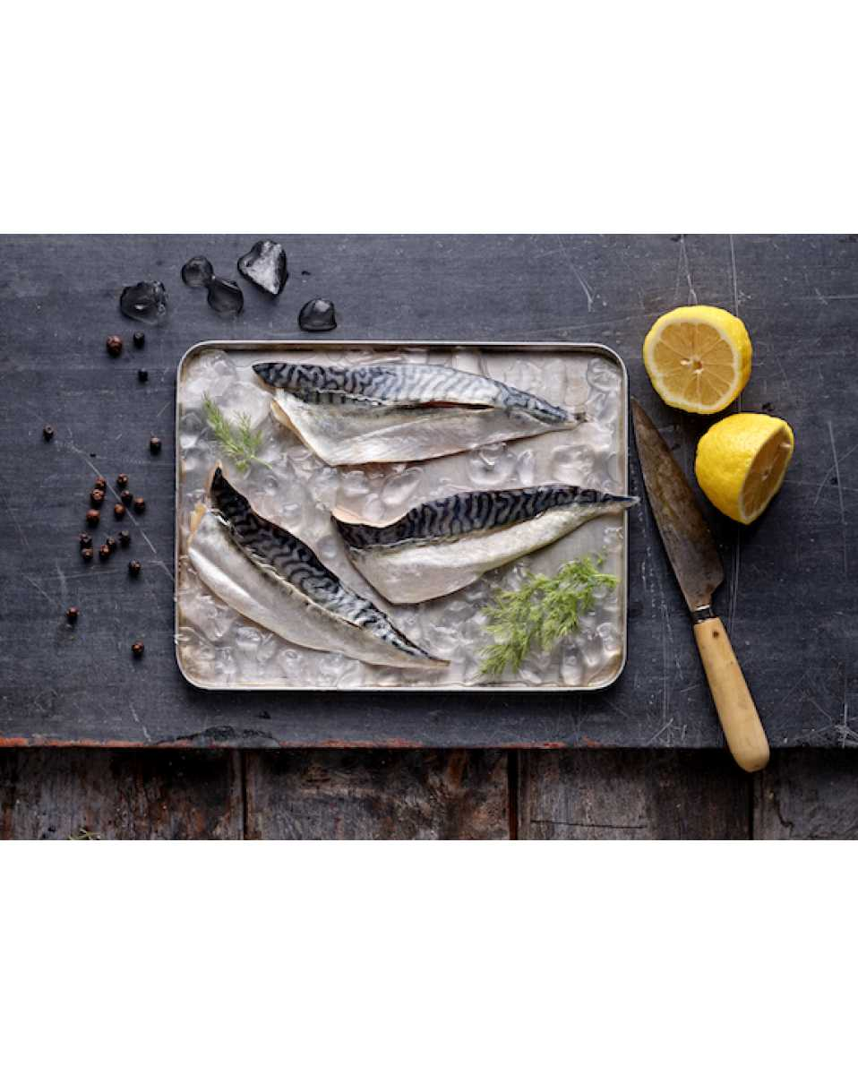 MSC Mackerel Fillets